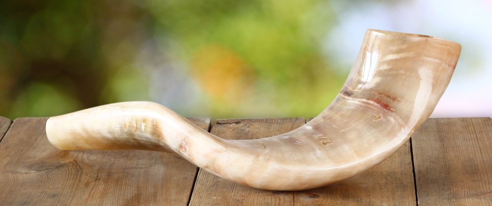 Have Shofar, Will Travel!